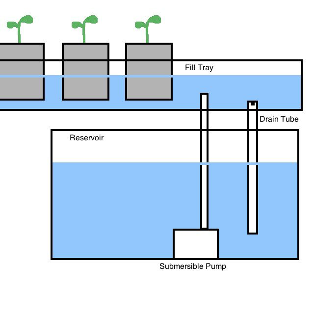 Ebb and Flow Systems of Hydroponic Gardens