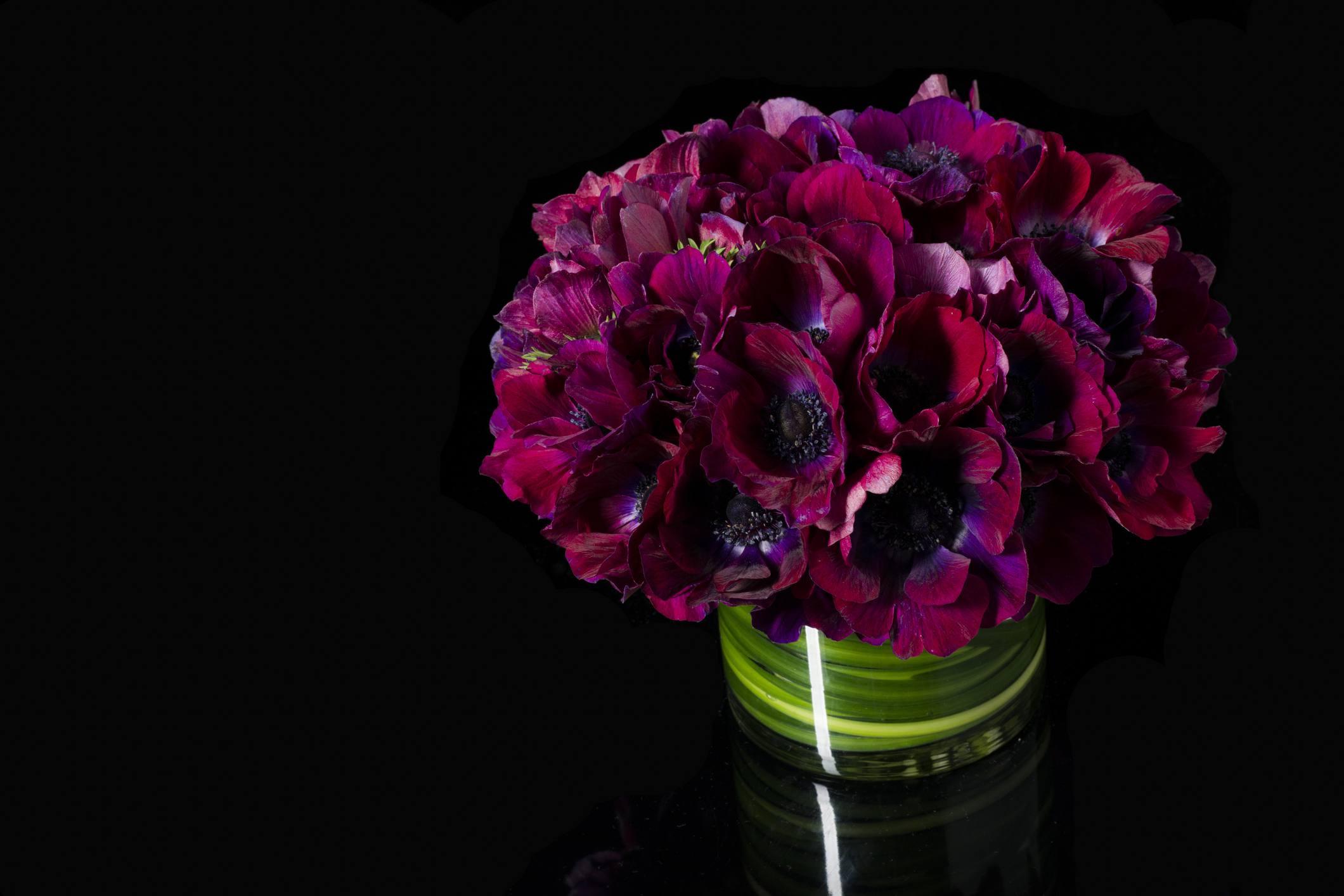 Bouquet of Purple Poppy Flowers in Vase