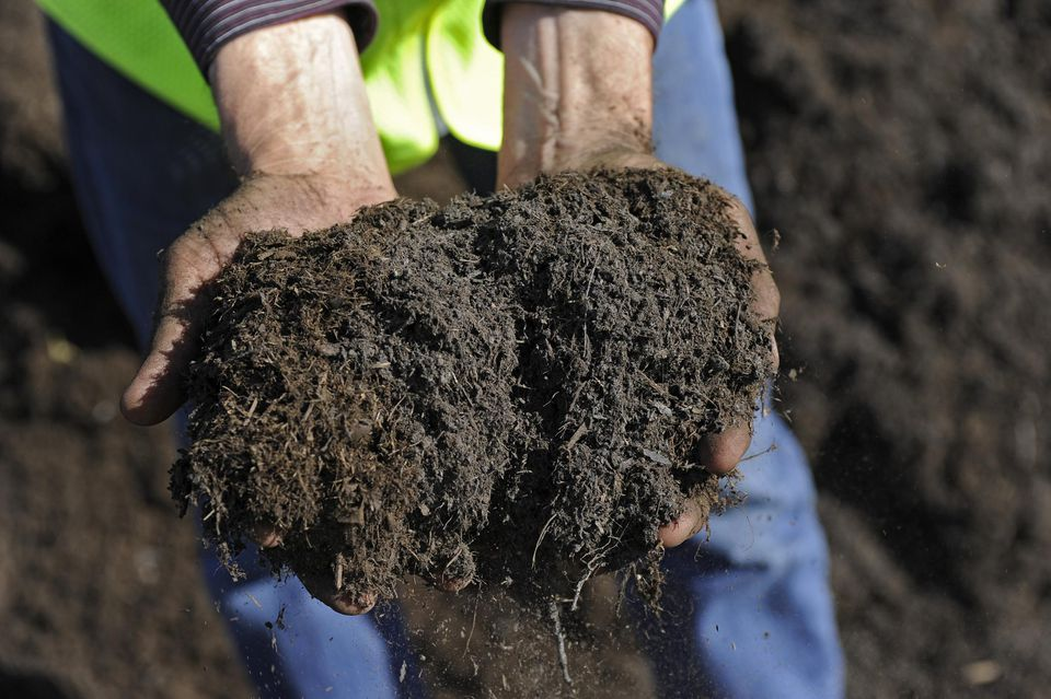 Garden Soil Delivery Dreamsofmylifes
