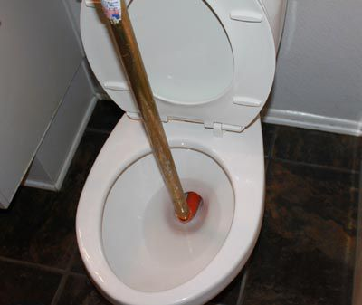 Inserted toilet auger
