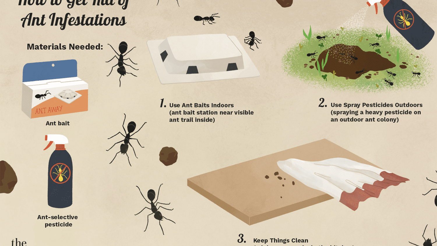 How To Get Rid Of Ants In The House, How To Get Rid Of Tiny Ants In Bathroom