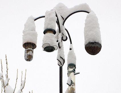 Snow Covered Bird Feeders