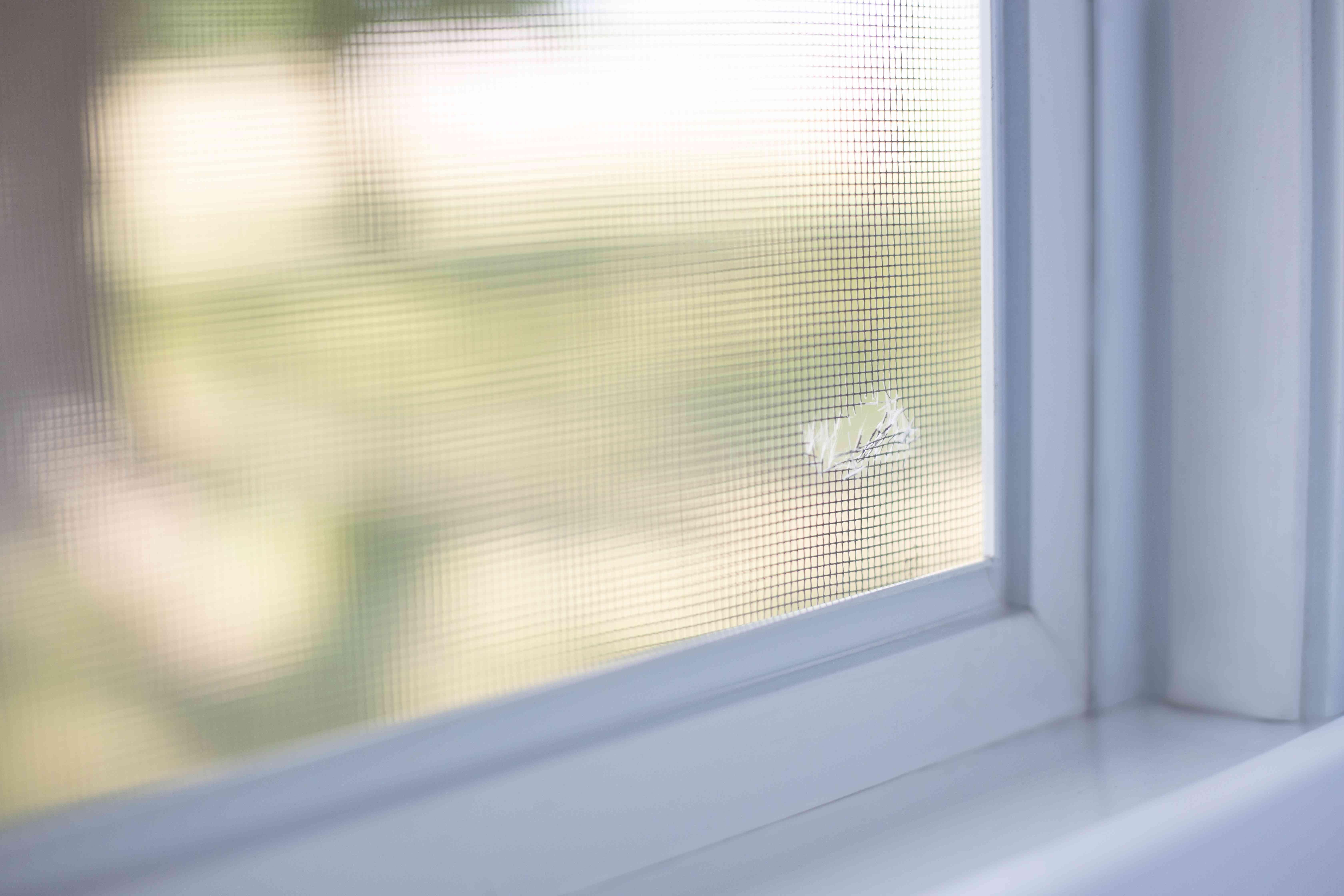 Hole in screen window