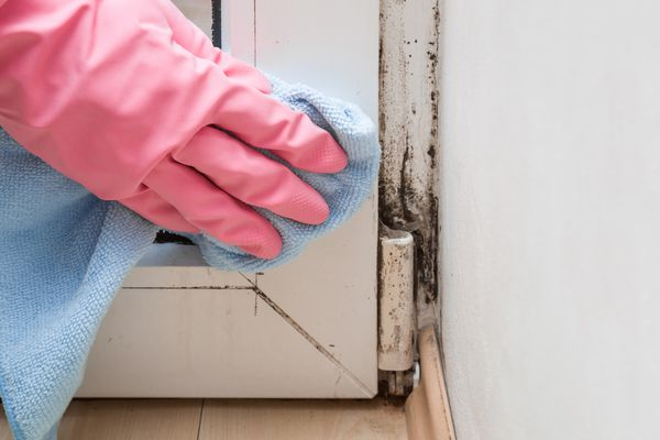 Cleaning Mold and Mildew
