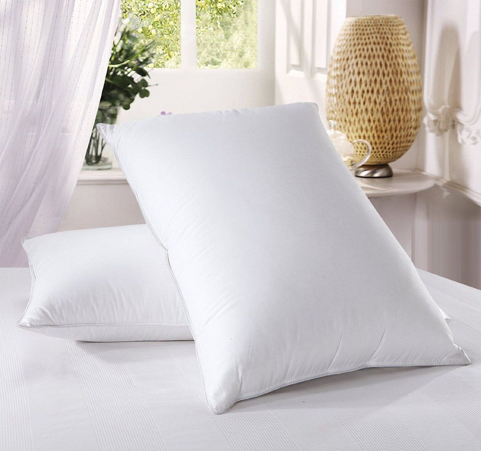 Best Down Filled Royal Hotel S Goose Pillow Set Of 2