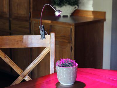 Aceple LED 6W Desk Plant Grow Light