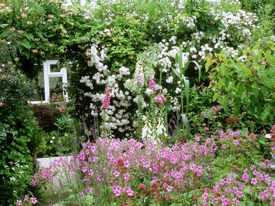 Get In Touch With The Past Grow A Cottage Garden Landscaping Ideas