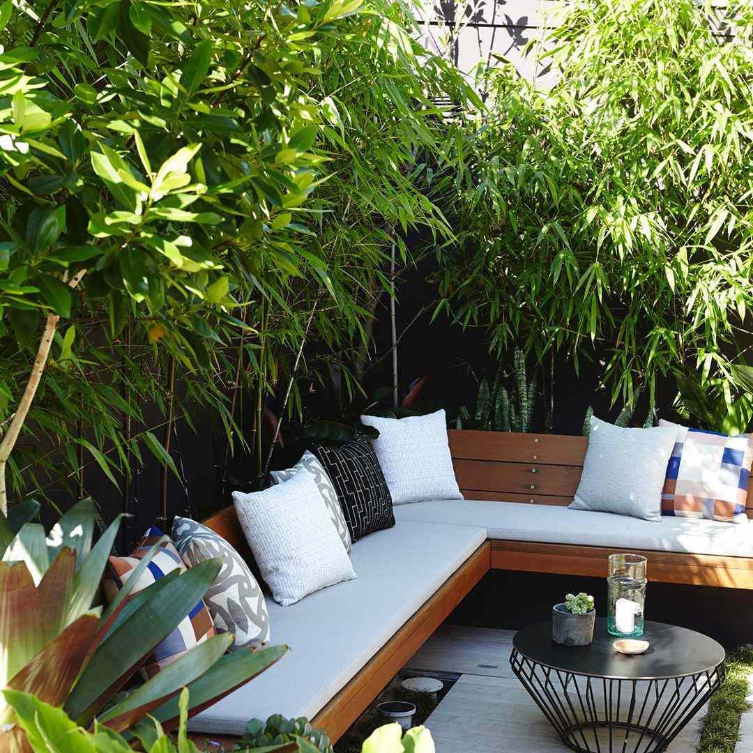 Sofá al aire libre rodeado de plantas