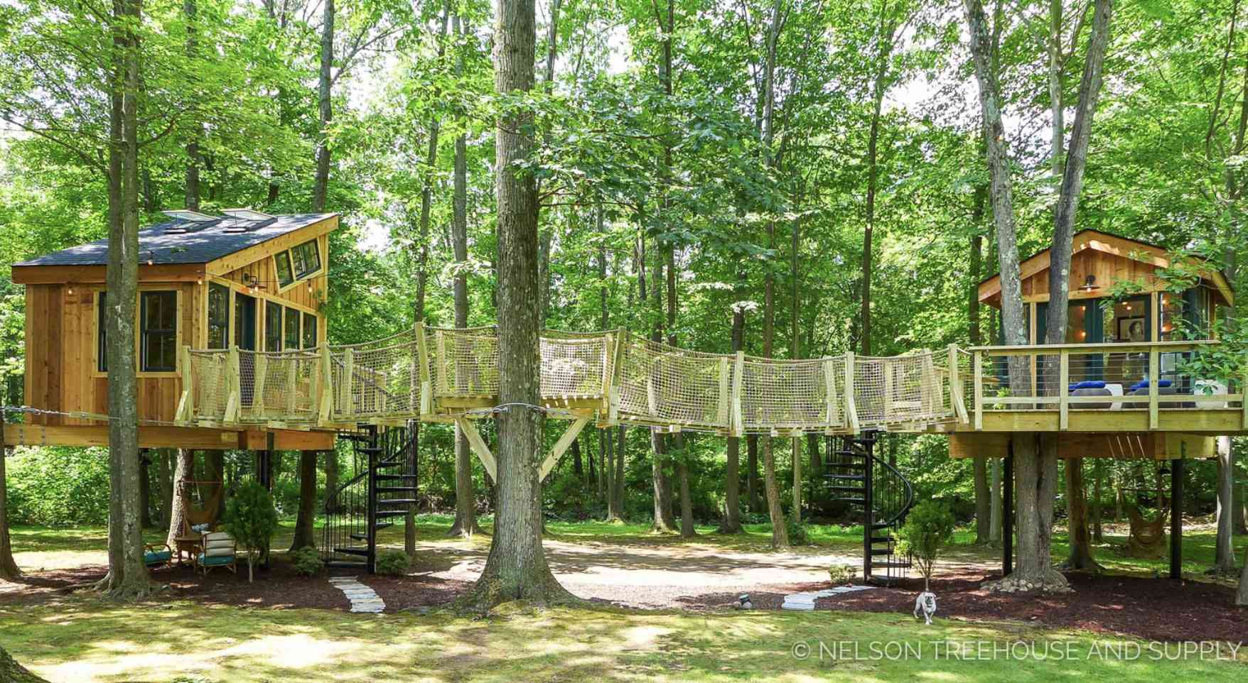 Two treehouses with bridge between them