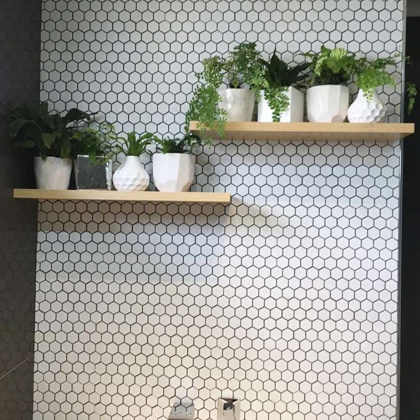 Bathroom shelves with plants in front of a hexagon tile wall