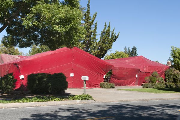 A house being tent fumigated