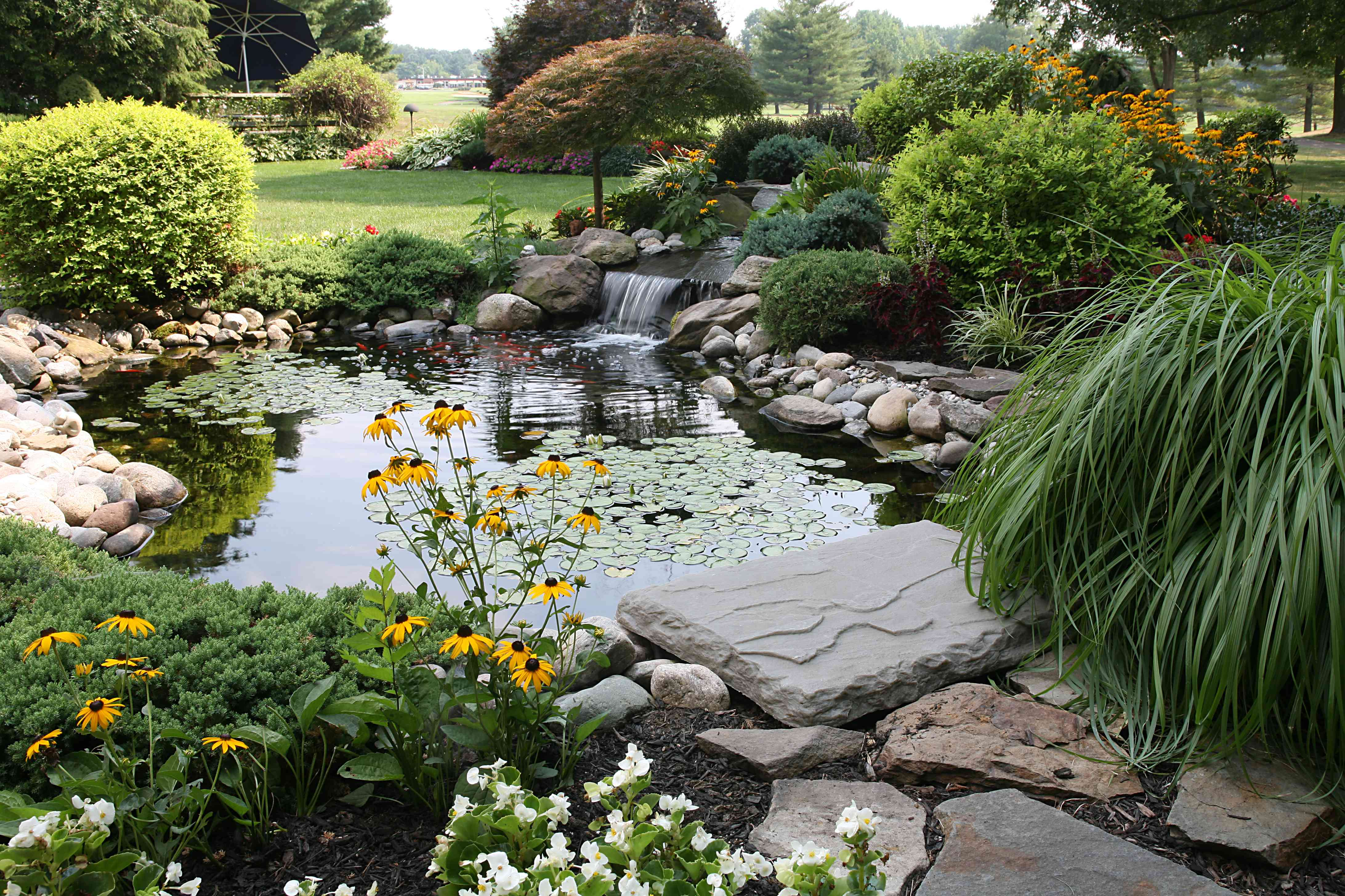 A natural-looking koi pond with a waterfall and rocks.