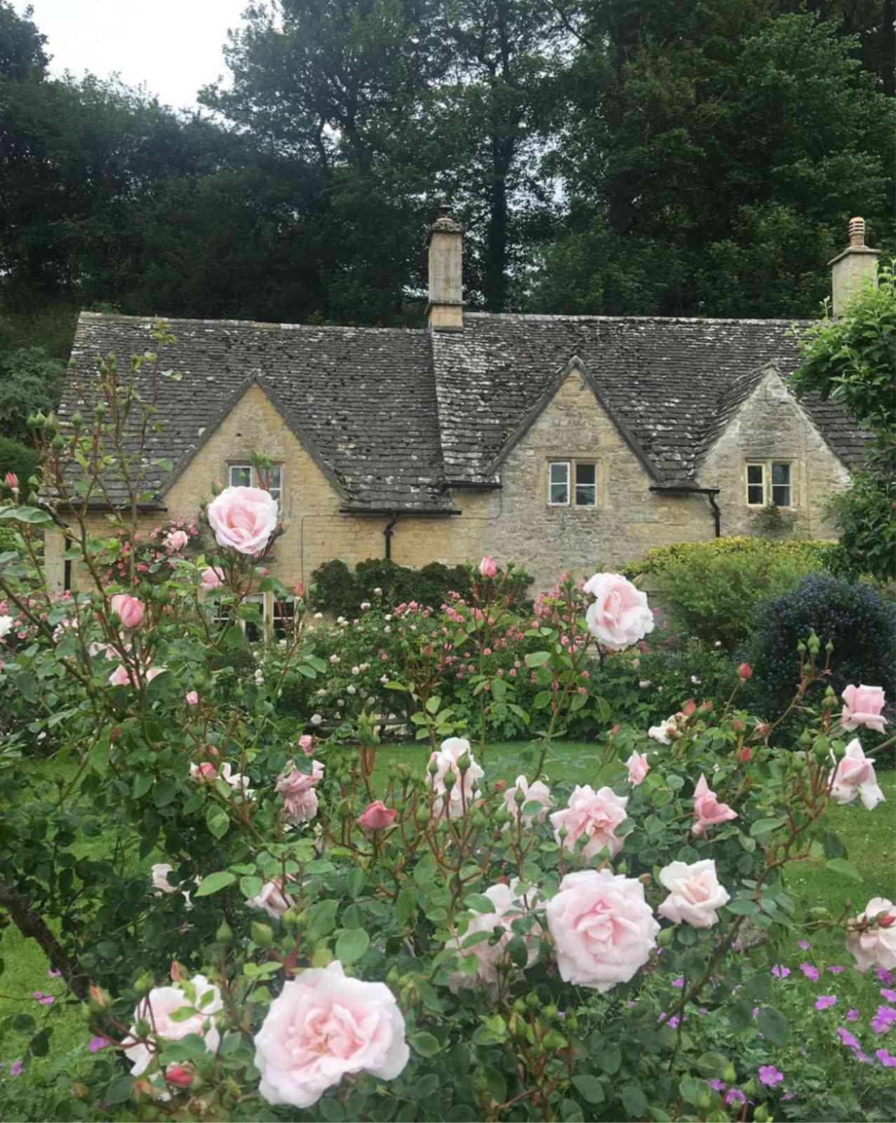 Bibury Cottage english cottage and roses