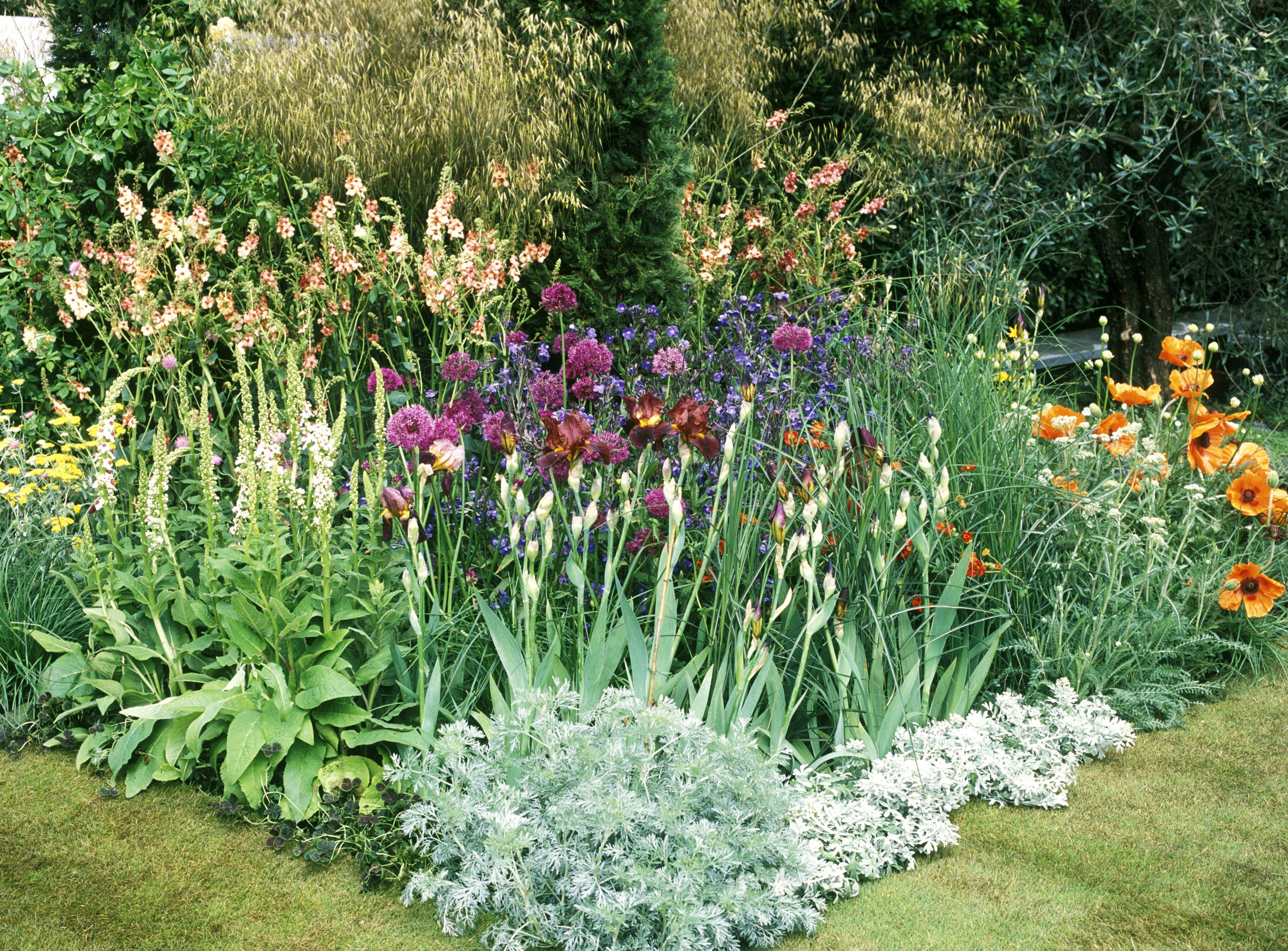 Un jardín para todos los tiempos, Chelsea Flower Show