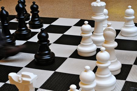 The 5 Best Books About Chess Openings of 2019