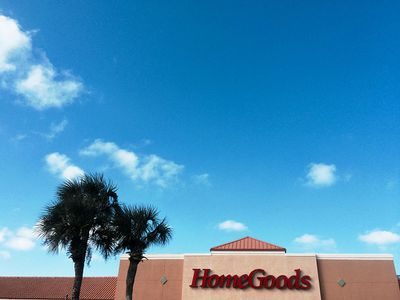 A HomeGoods store front with palm trees