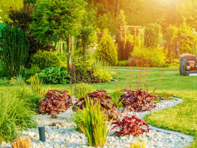 Avoid Weeds Pests And Other Costly Problems