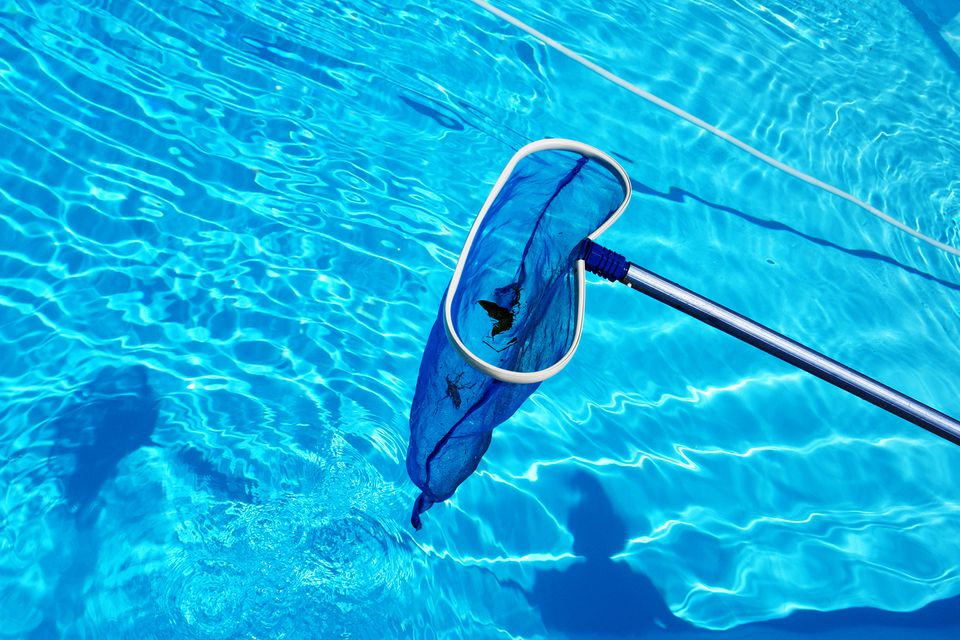 High Angle View Of Fishing Net In Swimming Pool