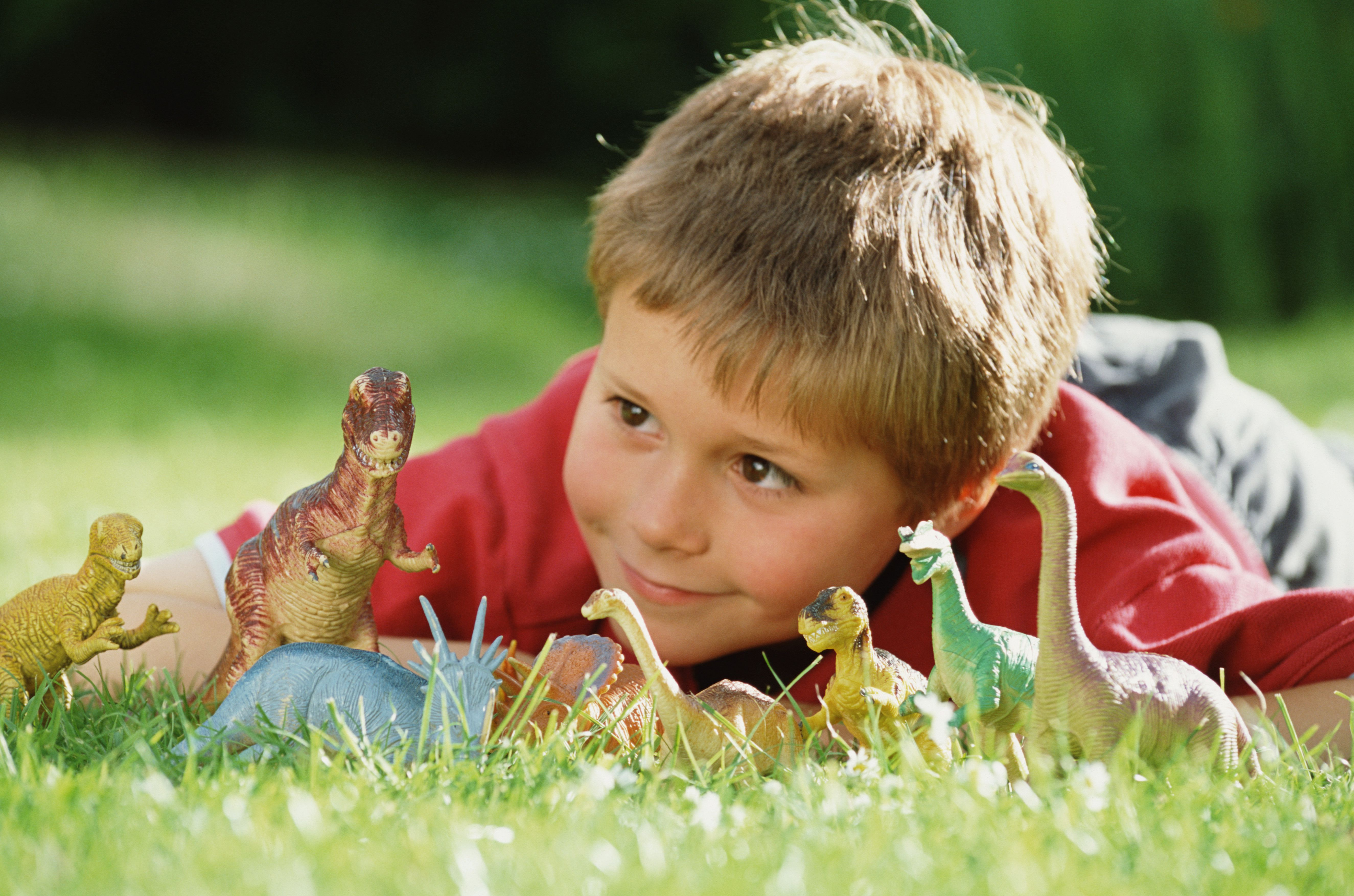 Boy (8-10) lying on grass, looking at row of toy dinosaurs, close-up