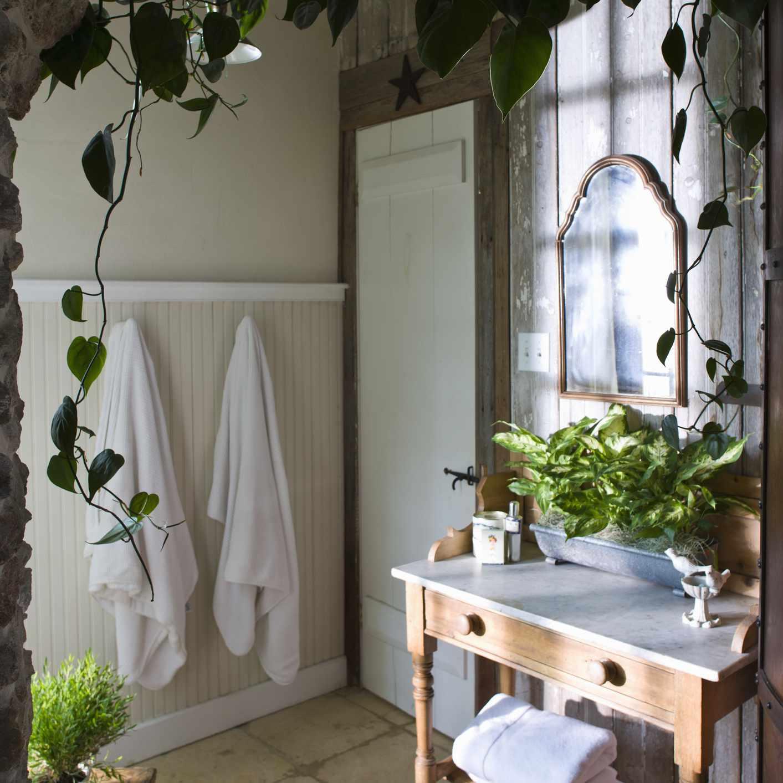 Farmhouse bathroom with plants
