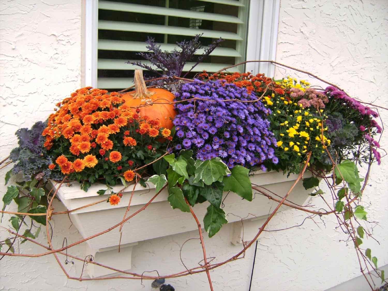 caja de la ventana de otoño