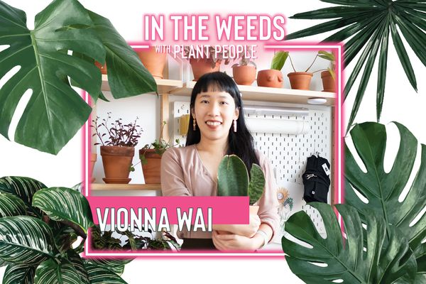 Vionna Wai, In the Weeds With Plant People