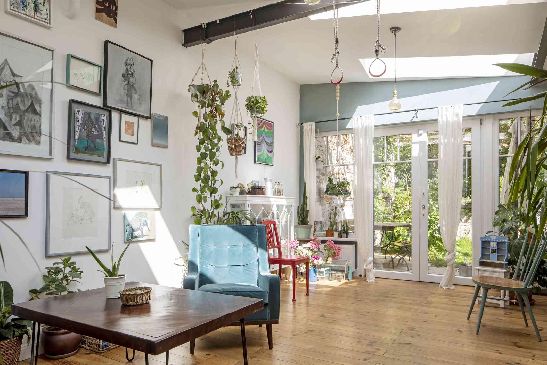 interior with plants