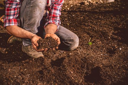 What Does Loam Mean to a Gardener?