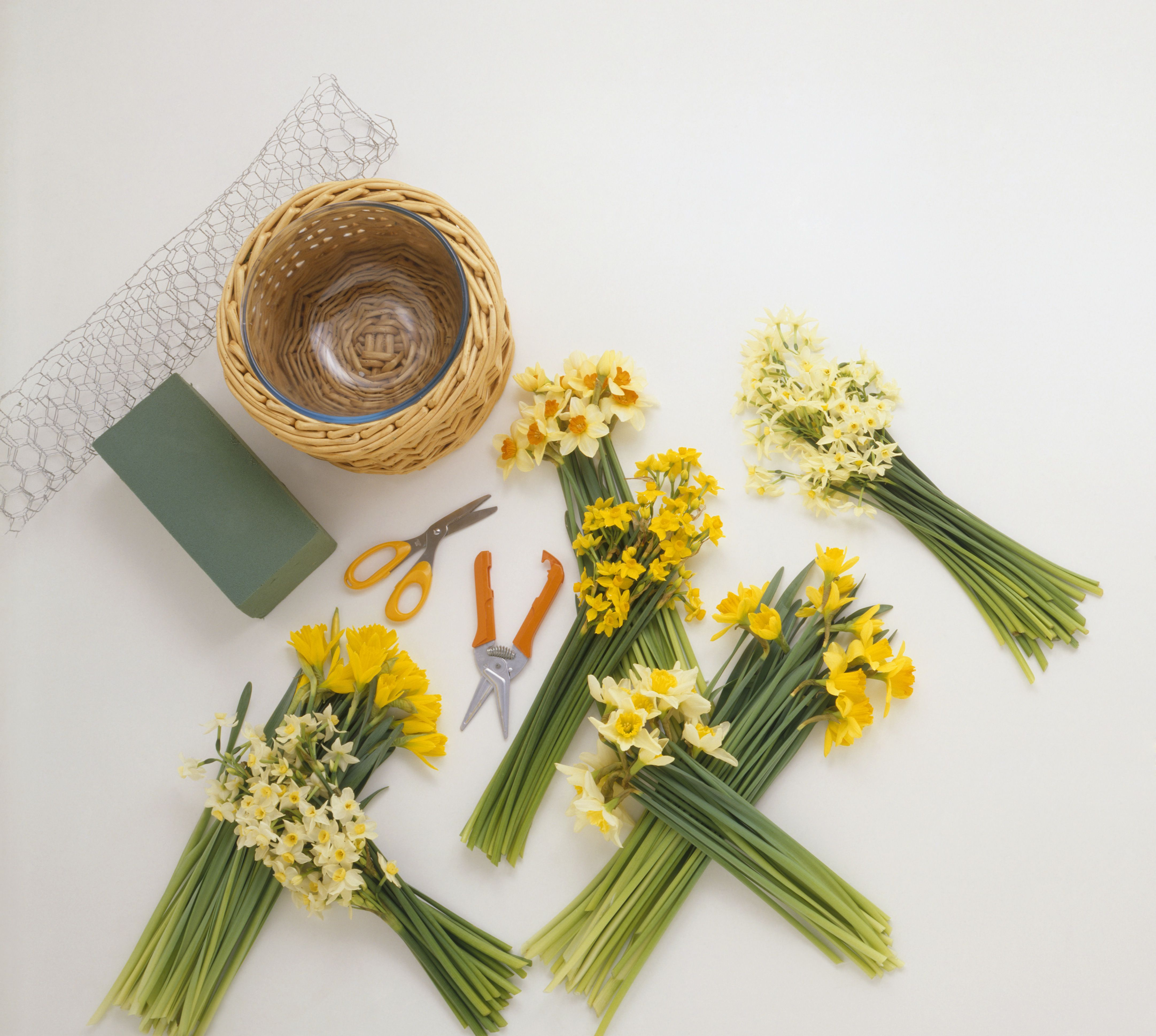 Basic Flower Arranging Supplies
