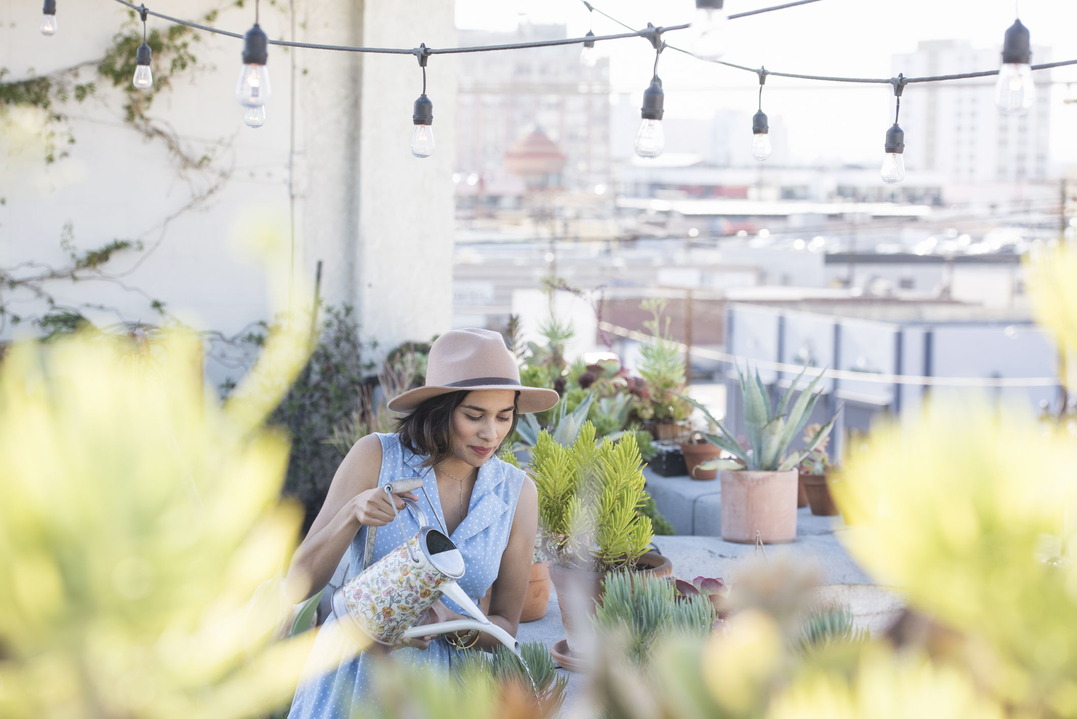 The Green Benefits Of A Roof Garden