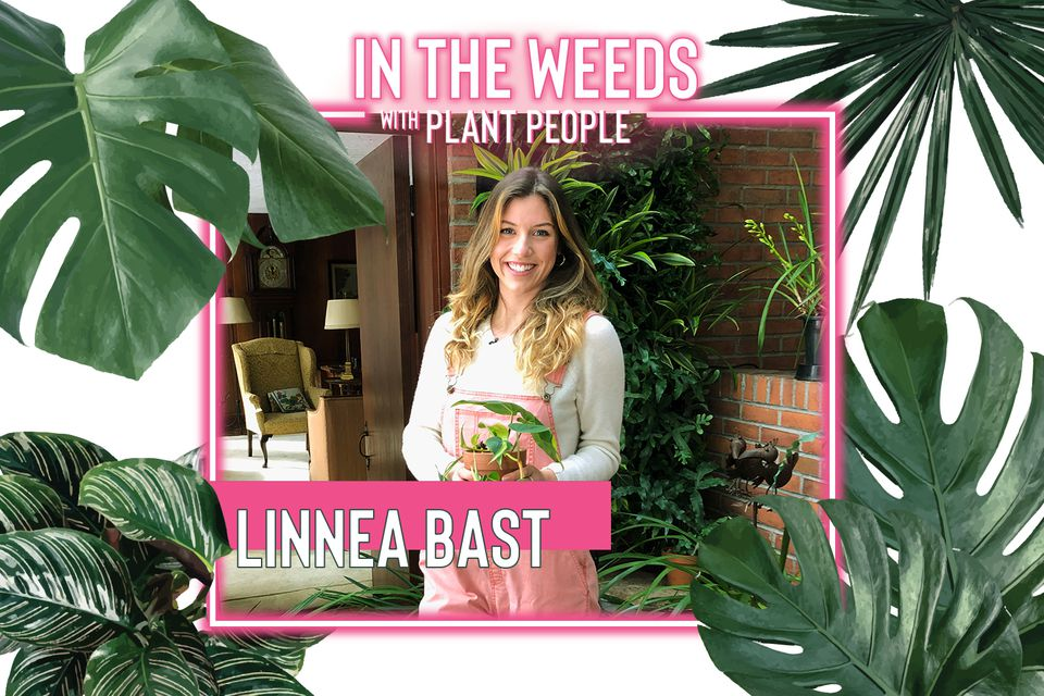 Linnea Bast for In the Weeds With Plant People