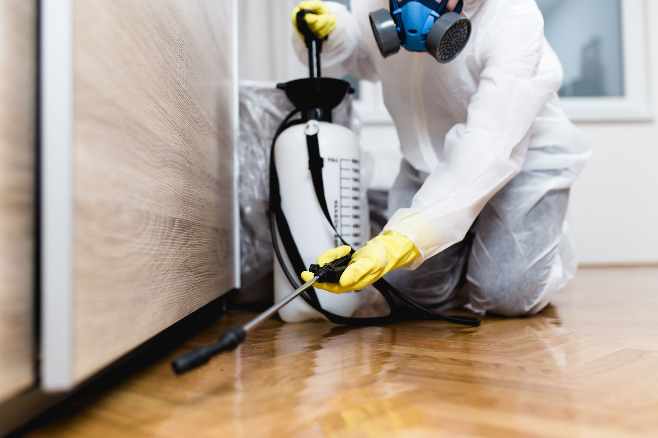 The Best Pest Control Services of 2021