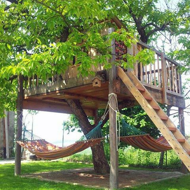 Tree house with hammock hang out