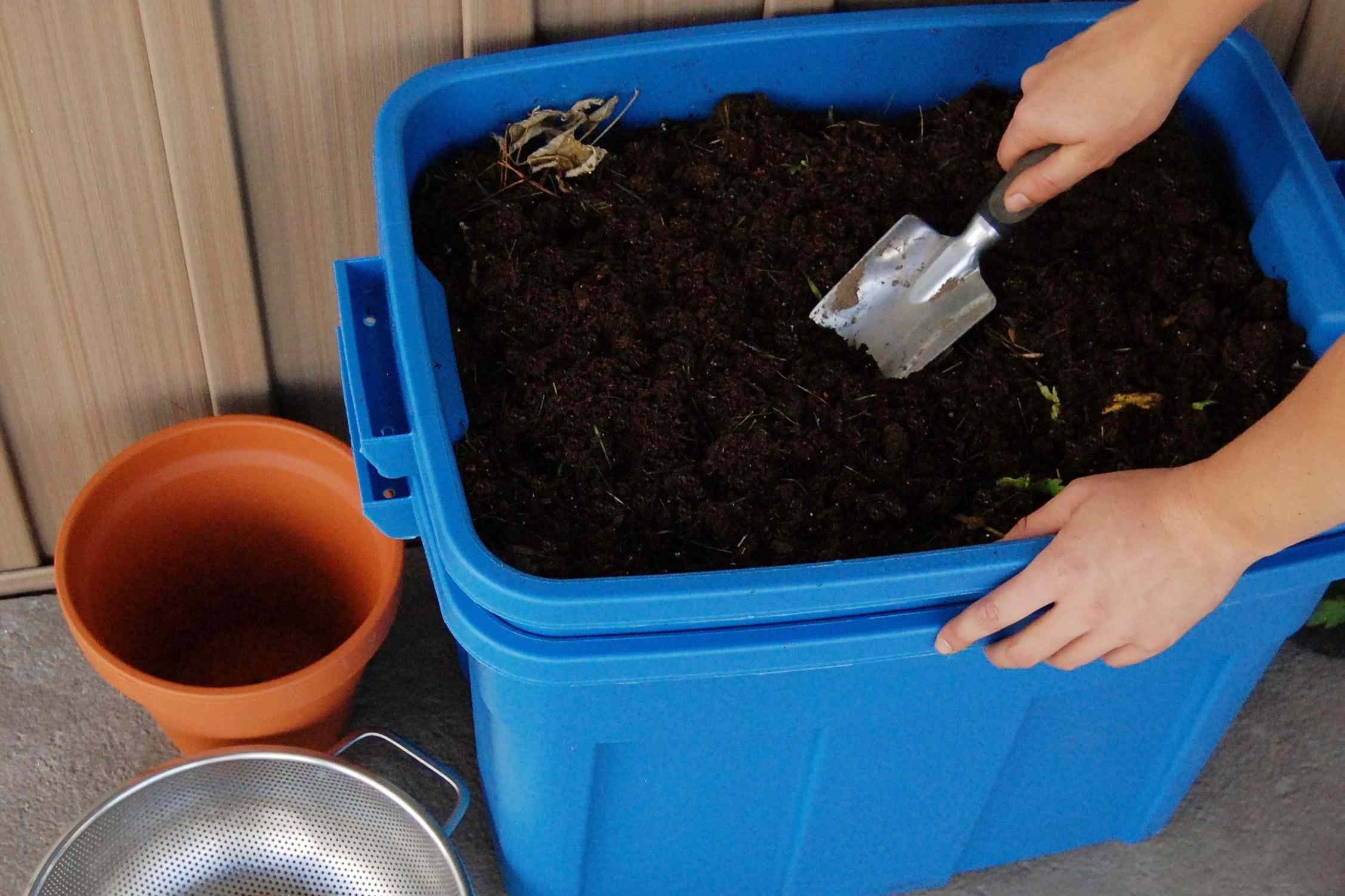 harvesting the compost