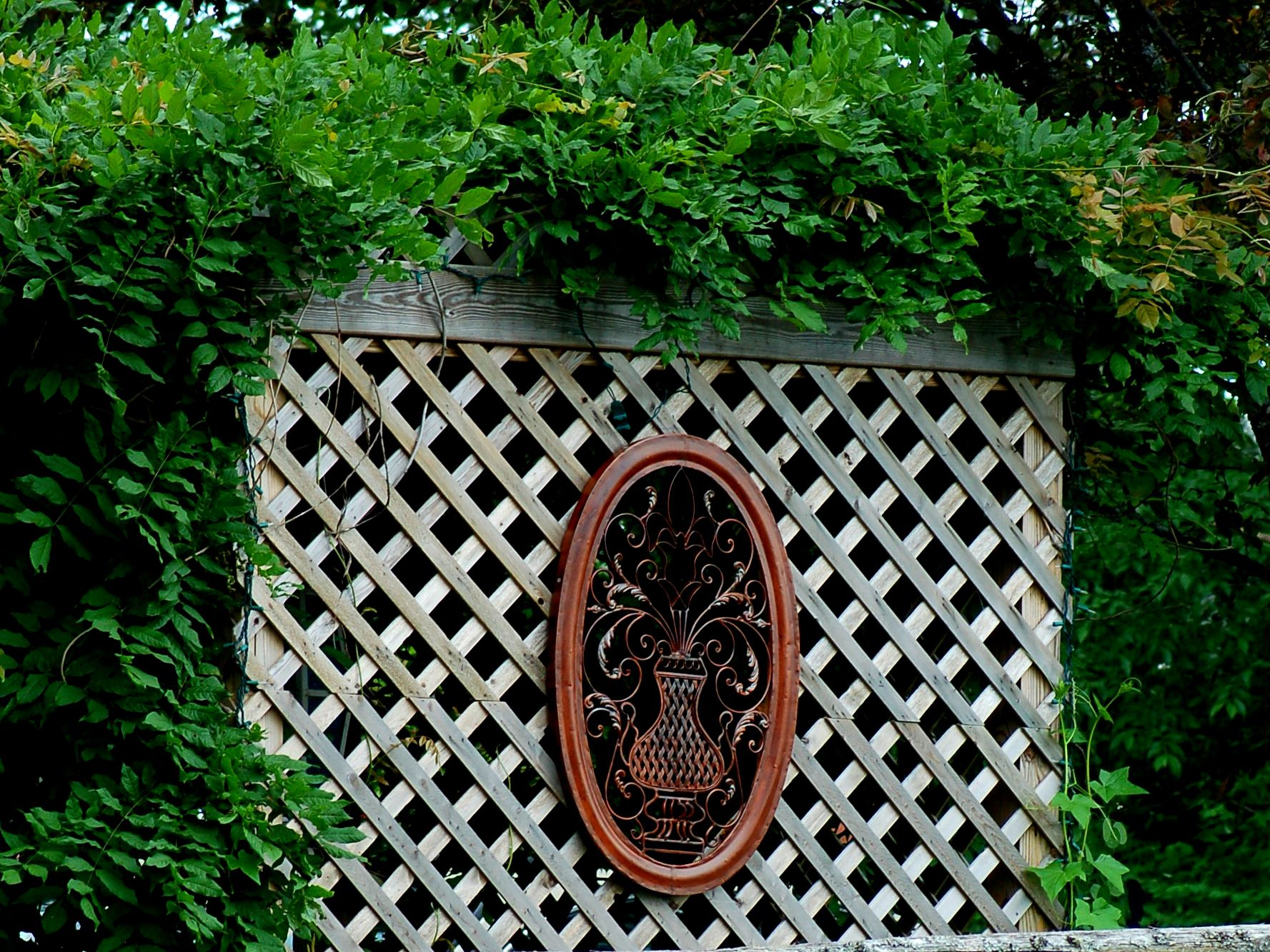 Picture of: How To Build A Wood Lattice Screen