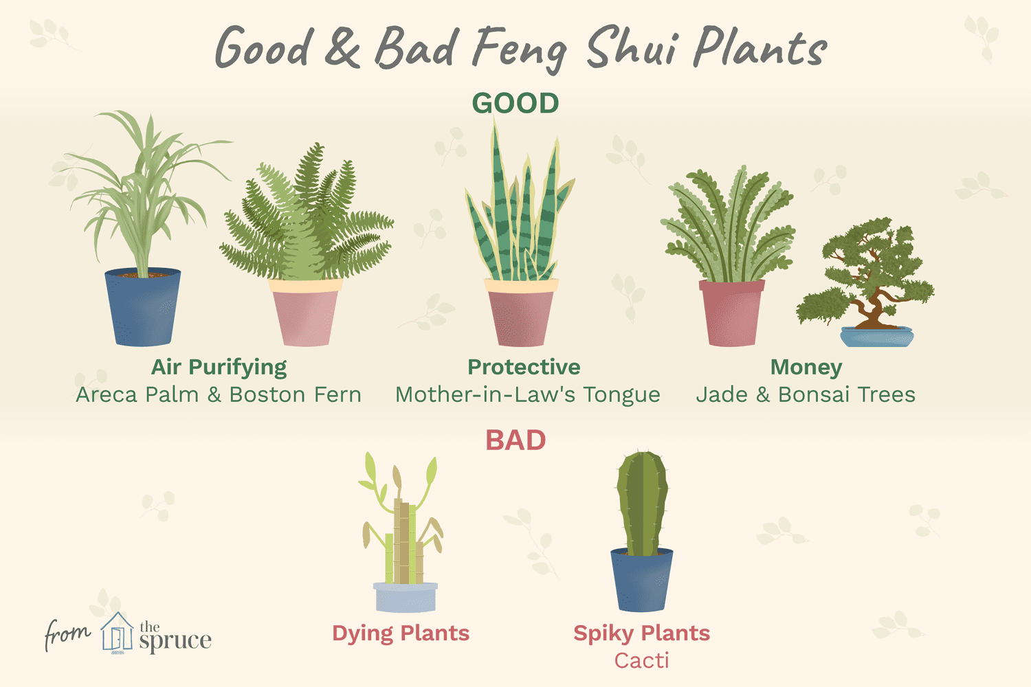 Good And Bad Feng Shui Plants
