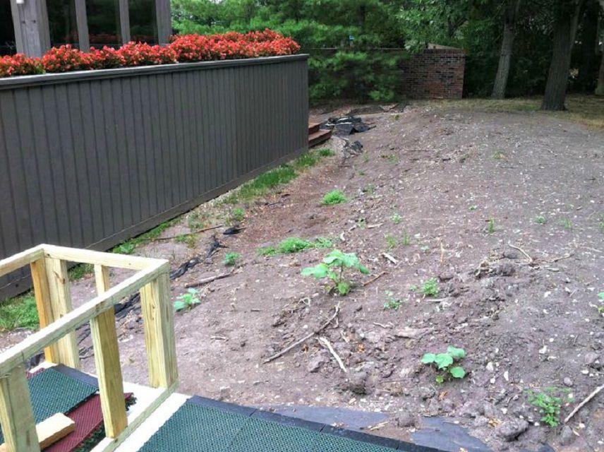 Cambio de imagen del patio trasero del jardín - Antes