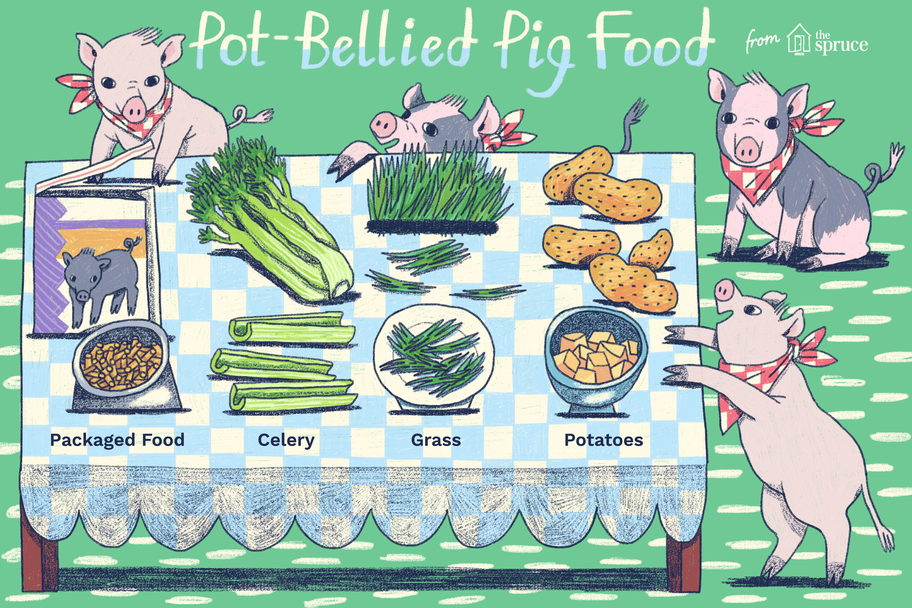 What Do Pot-Bellied Pigs Eat?
