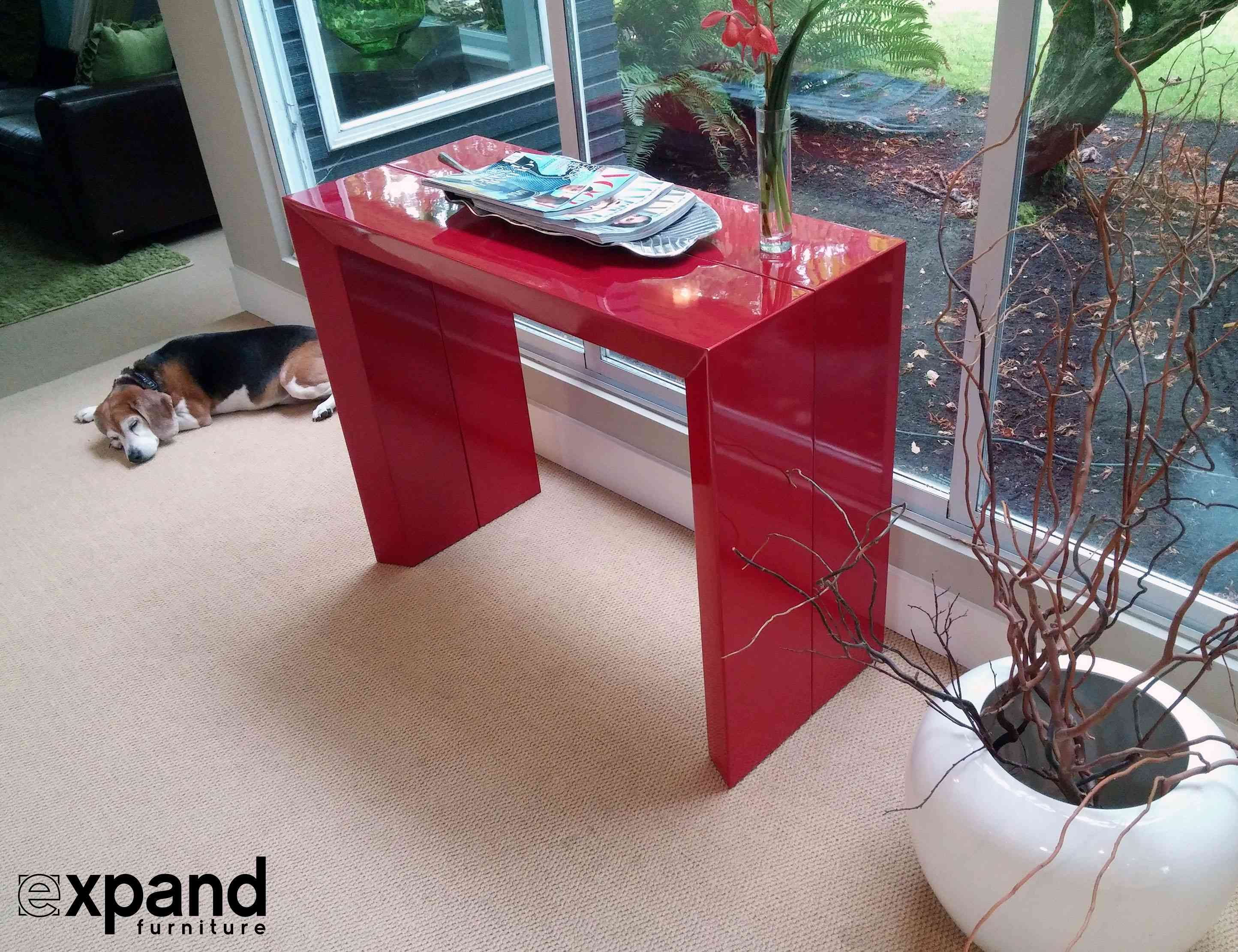 Expand furniture red table