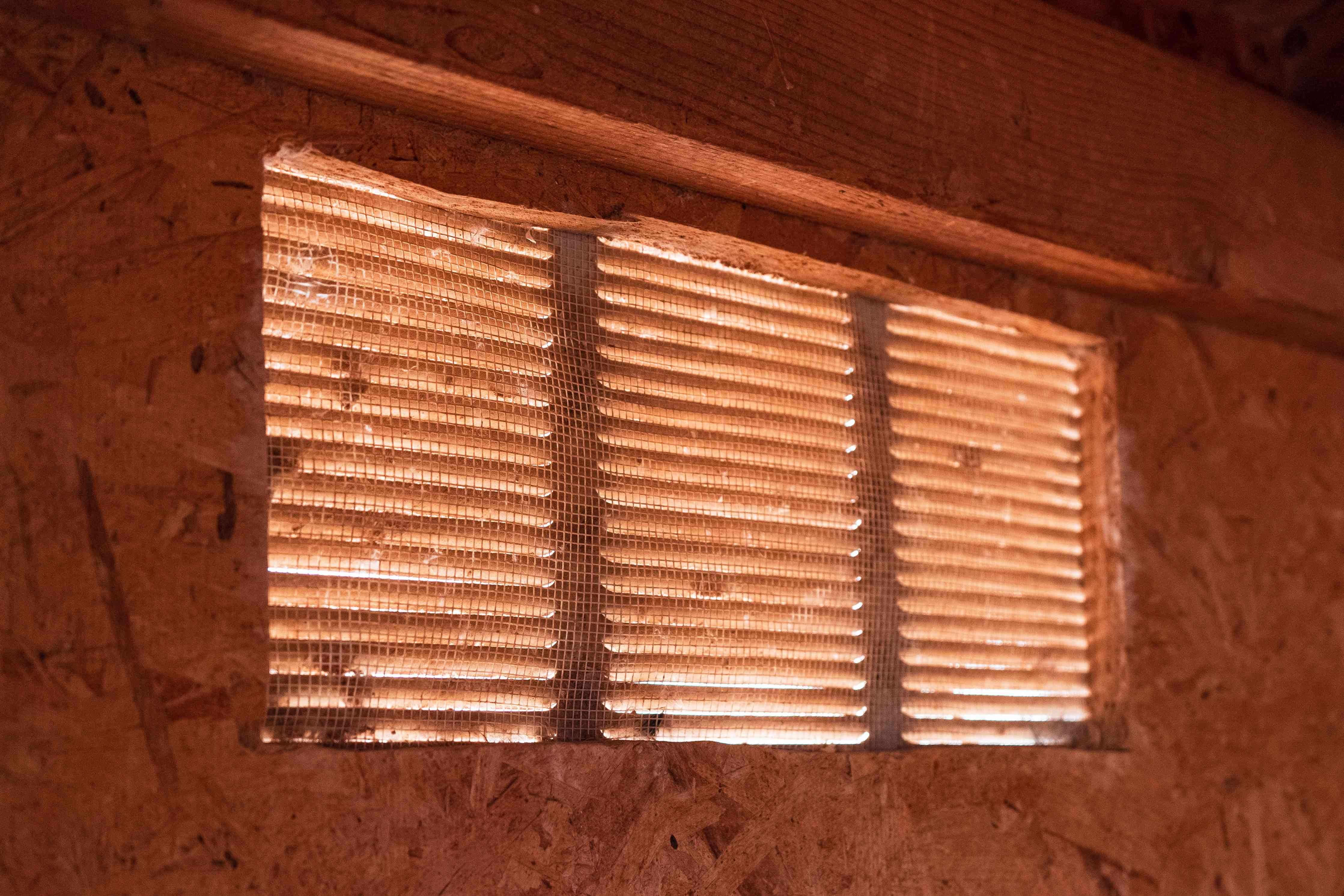Hardware cloth protecting opening inside chicken coop