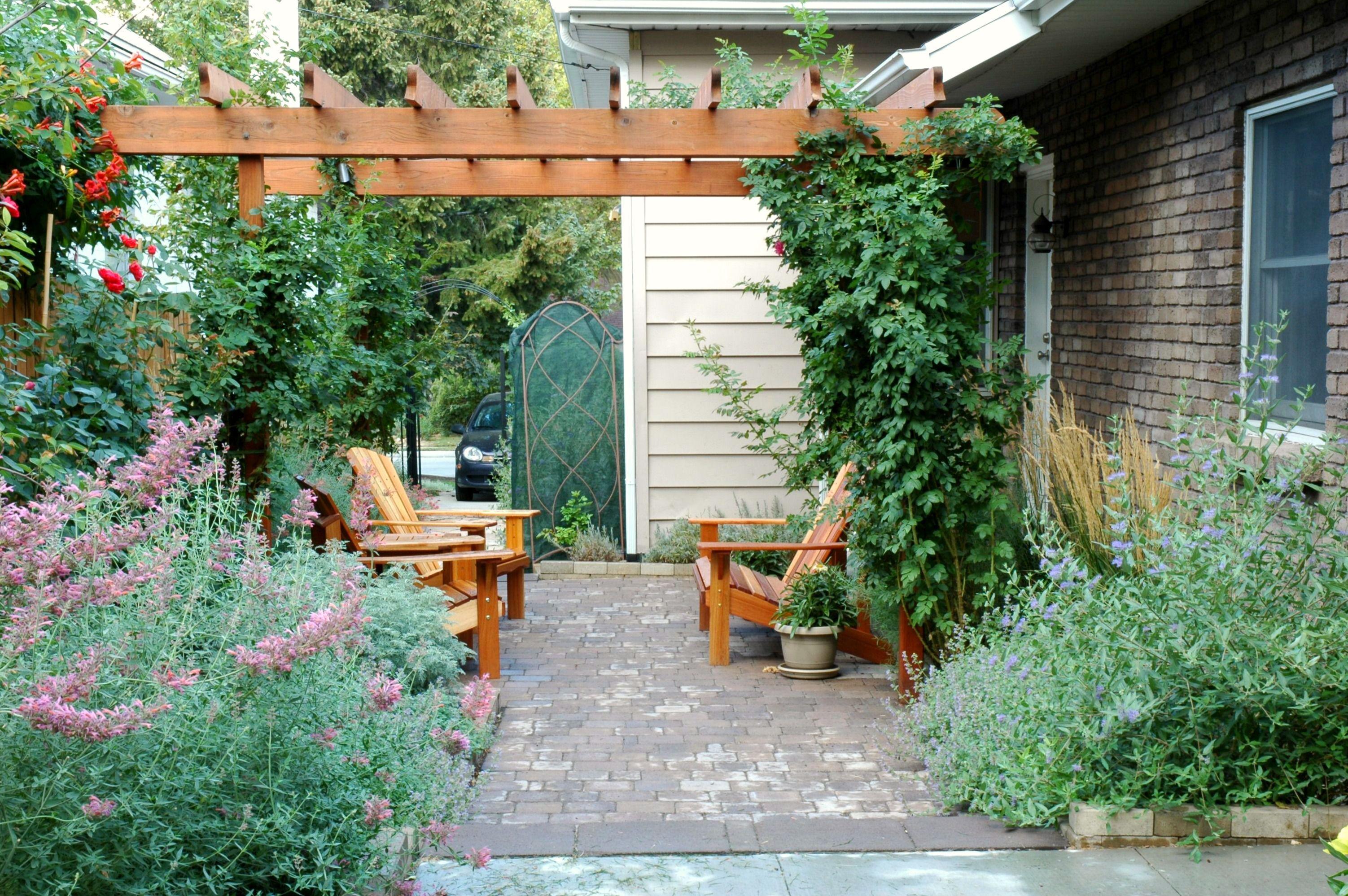 patio y pérgola