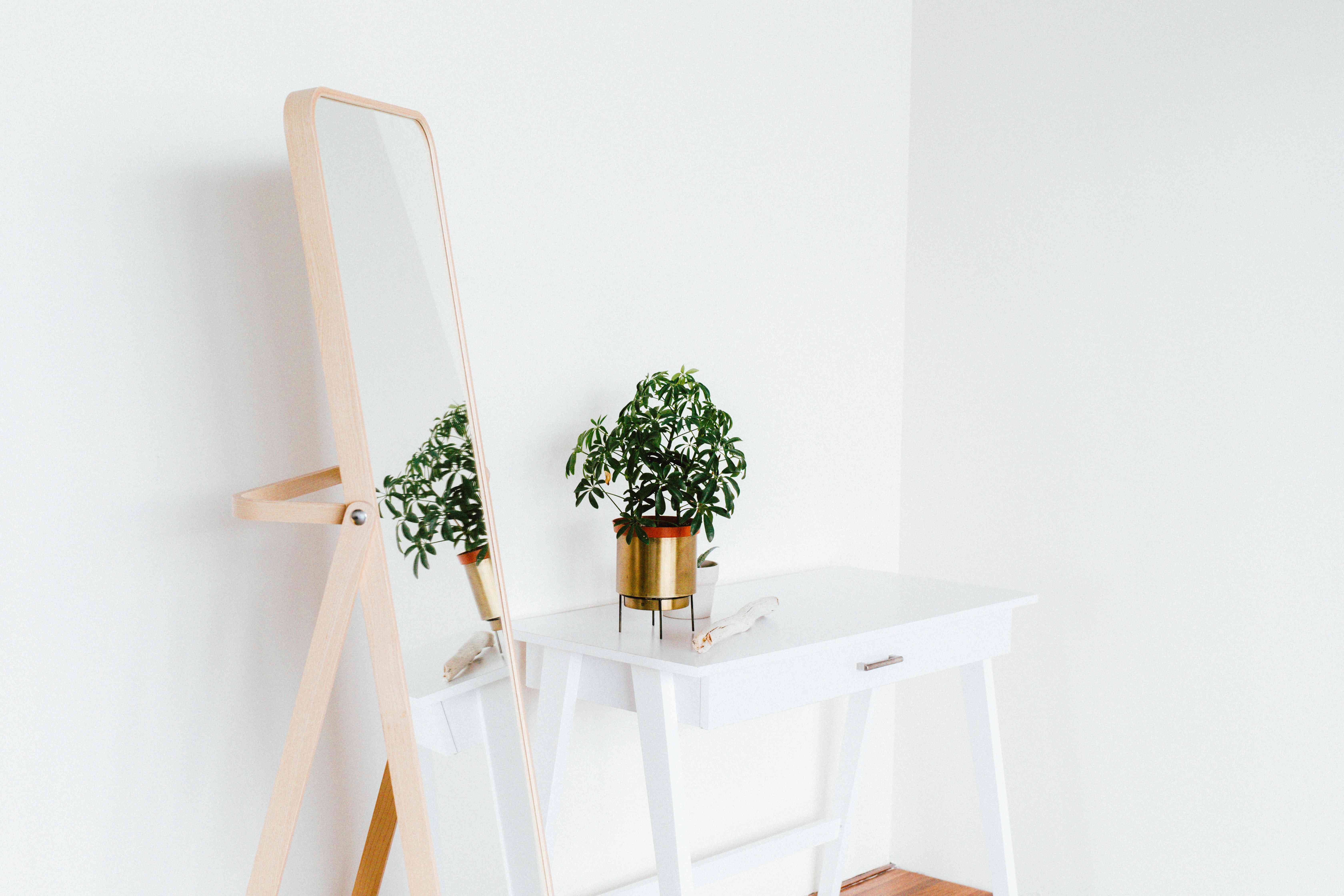 standing mirror next to a desk with plant