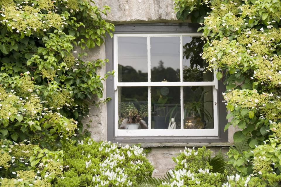 Double Hung Sash Window