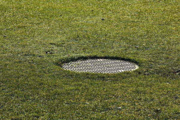 A drain cover in a backyard