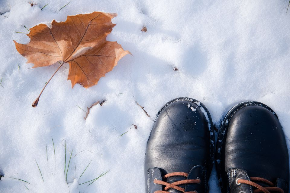 Shoes By Leaf On Snow Covered Field