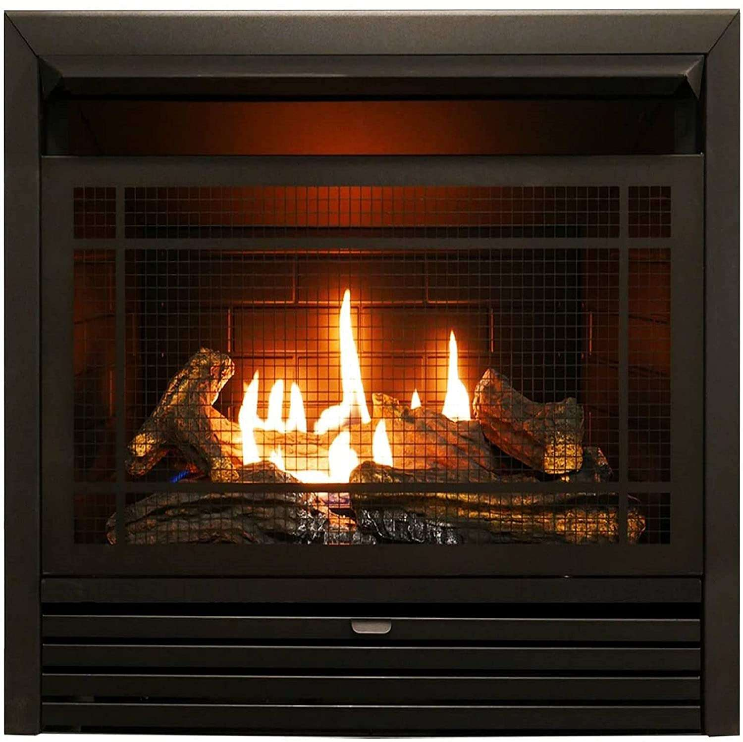 Duluth Forge Vent Free Dual Fuel Ventless Gas Fireplace Insert