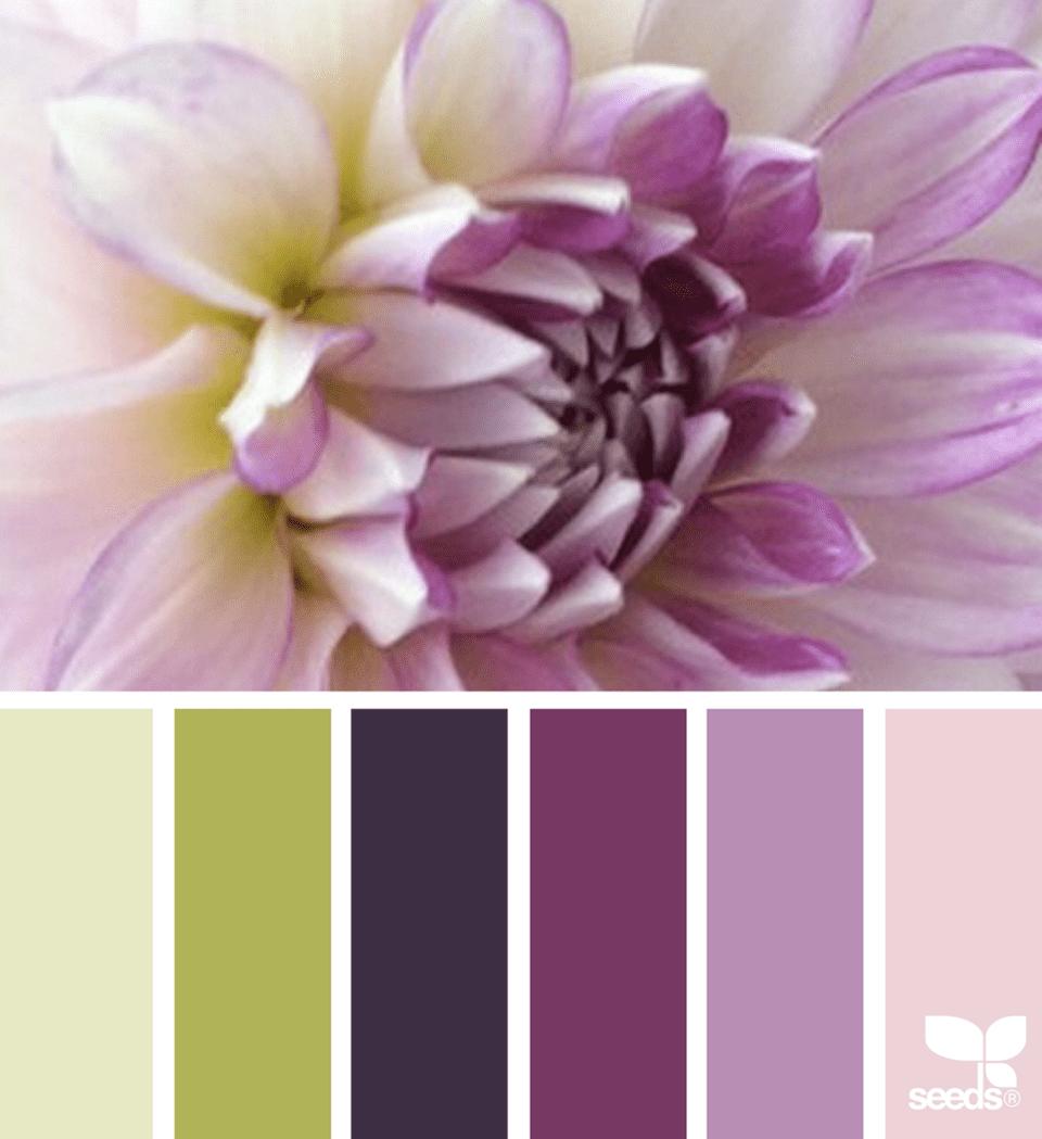 The 14 Best Design Sites For Color Inspiration