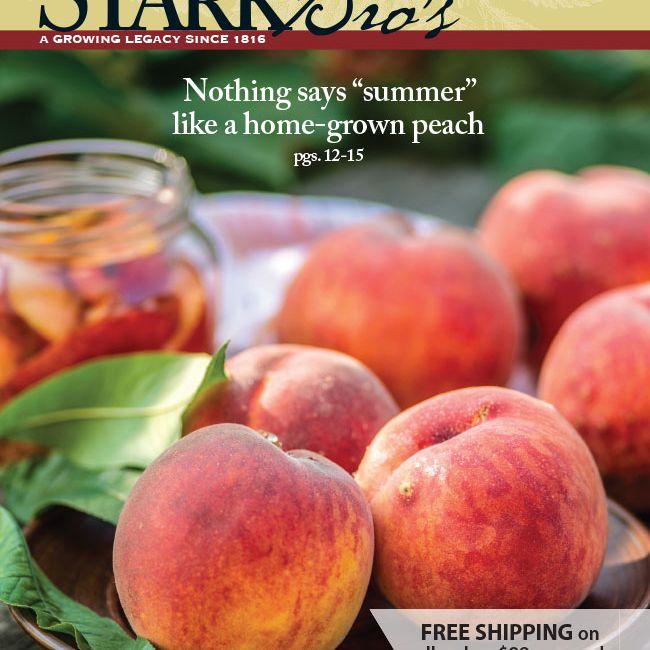 La portada del catálogo de jardines de Stark Bro