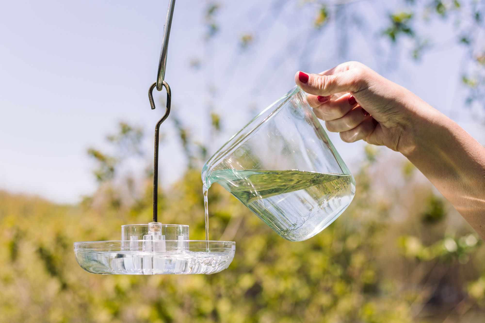 person pouring nectar into a hummingbird feeder