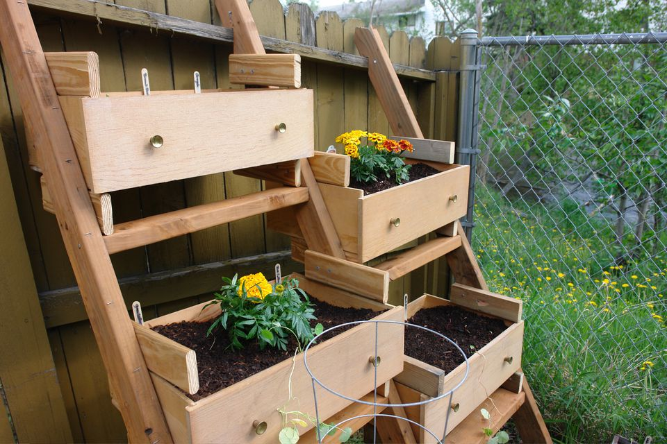 Dresser Turned into a Vegetable Garden